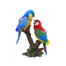 boite perroquets