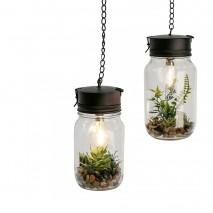 Lampe et plante décorative à suspendre