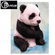 Panda A