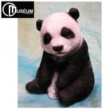 Panda C