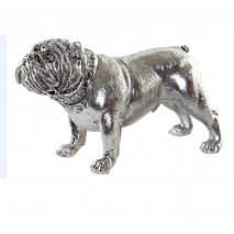 Chien bulldog argenté