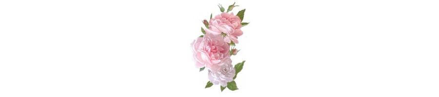 Décors Pivoine et rose anglaise