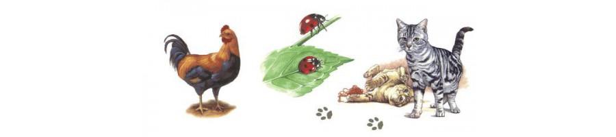 Différentes tailles de bols avec des animaux