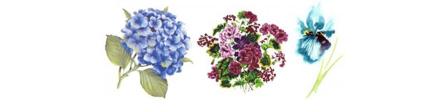 Différentes tailles de bols avec des fleurs